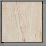 Soft Maple Wood Species Sample