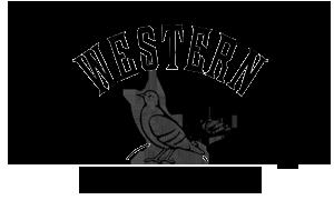 Western Dovetail Sunrise Logo